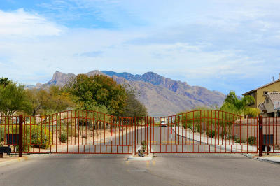 Tucson Single Family Home Active Contingent: 8718 N Walter Hagen Drive