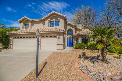 Tucson Single Family Home For Sale: 1664 W Wimbledon Way