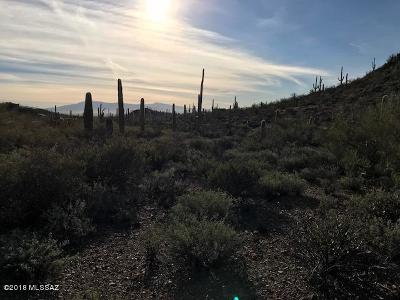 Tucson Residential Lots & Land For Sale: 3625 N Ave Dos Vistas