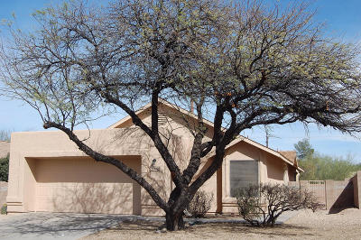 Tucson Single Family Home Active Contingent: 1440 N Amberbrooke Avenue