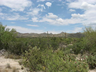 Tucson Residential Lots & Land For Sale: N Como Drive