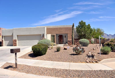Oro Valley Single Family Home For Sale: 13364 N Regulation Drive