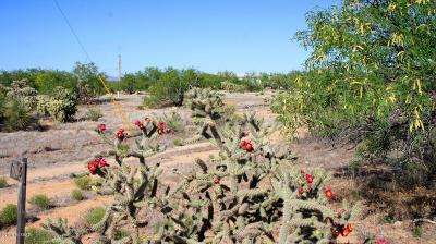 Tucson Residential Lots & Land For Sale: 11235 S Alyce Avenue #41