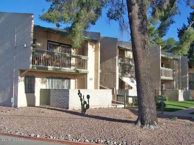 Tucson Condo For Sale: 808 S Langley Avenue #101