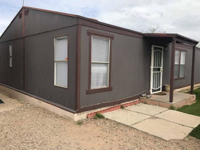 Pima County Manufactured Home Active Contingent: 27 E King Road