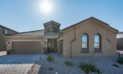 Marana Single Family Home For Sale: 9693 N Melandra Way