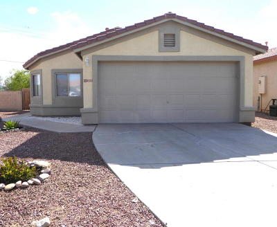 Tucson Single Family Home For Sale: 8423 N Canal Court