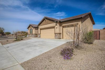 Marana Single Family Home Active Contingent: 14332 N Fire Pit Court
