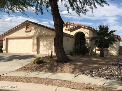 Tucson Single Family Home For Sale: 9570 N Patagonia Place