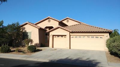 Marana Single Family Home For Sale: 12730 N Satsuma Drive