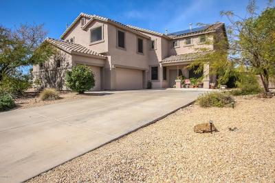 Single Family Home For Sale: 10850 S Distillery Canyon Spring Drive