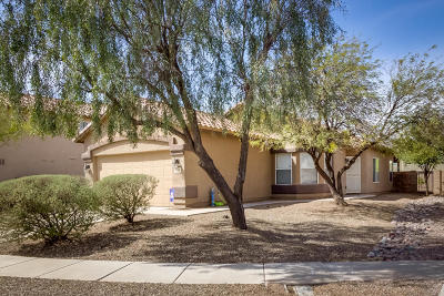 Tucson Single Family Home For Sale: 7496 W Briner Drive