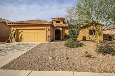 Marana Single Family Home For Sale: 11066 W Aplomado Drive