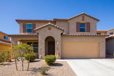 Marana Single Family Home For Sale: 12493 N Summer Wind Drive