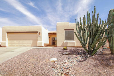 Tucson Single Family Home For Sale: 10340 N Mineral Spring Lane