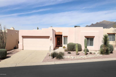 Tucson Single Family Home For Sale: 529 E Squirrel Tail Drive