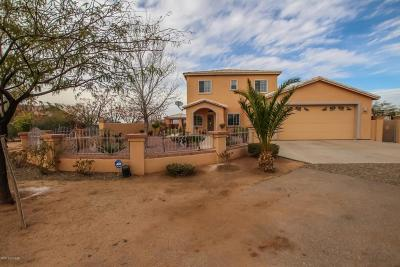Tucson Single Family Home For Sale: 7552 W Velo Road