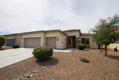 Sahuarita Single Family Home For Sale: 15058 S Camino Rio Puerco