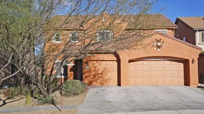 Tucson Single Family Home For Sale: 6019 S Jakemp Trail