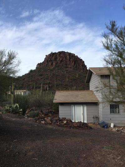 Tucson Single Family Home For Sale: 10210 N Silverbell Road