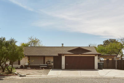 Tucson Single Family Home For Sale: 1401 S Salamander Place