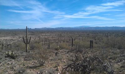 Marana Residential Lots & Land For Sale: S Cattle Tank
