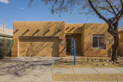 Tucson Single Family Home For Sale: 182 N Desert Park Place