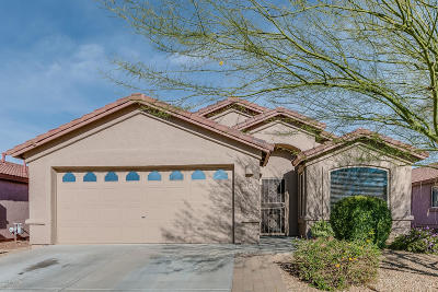 Oro Valley Single Family Home Active Contingent: 12291 N Kylene Canyon Drive