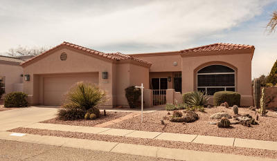 Pima County, Pinal County Single Family Home For Sale: 2457 N Quesnel Loop