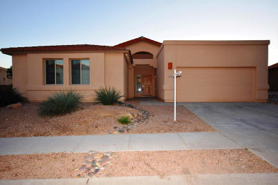 Tucson Single Family Home For Sale: 11255 N Platte Drive
