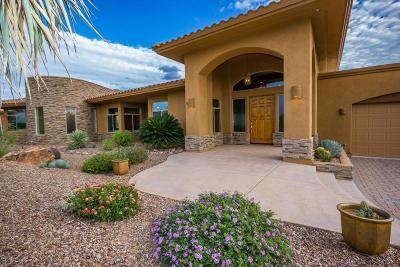 Oro Valley Single Family Home For Sale: 585 W Red Mountain Place