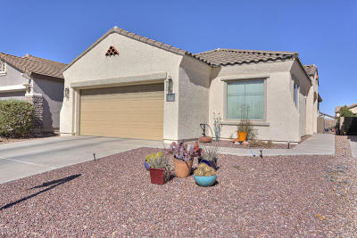 Sahuarita Single Family Home For Sale: 228 W Calle Media Luz