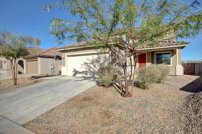 Tucson Single Family Home For Sale: 7263 S Valley Stream Drive