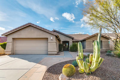 Saddlebrooke Single Family Home For Sale: 39780 S Winding Trail Trail