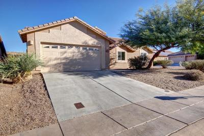 Sahuarita Single Family Home For Sale: 1093 E Stronghold Canyon Lane