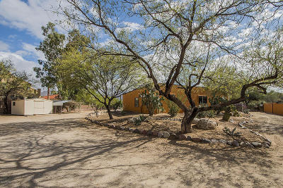 Tucson Single Family Home For Sale: 200 W Rudasill Road
