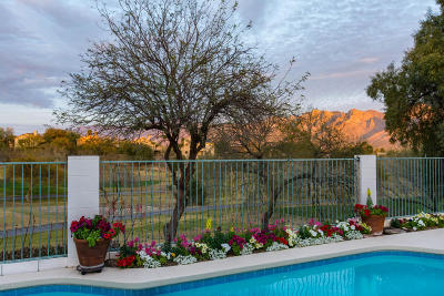 Oro Valley Single Family Home Active Contingent: 1626 W Canada Hills Drive