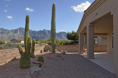 Oro Valley Single Family Home Active Contingent: 14022 N Trade Winds Way