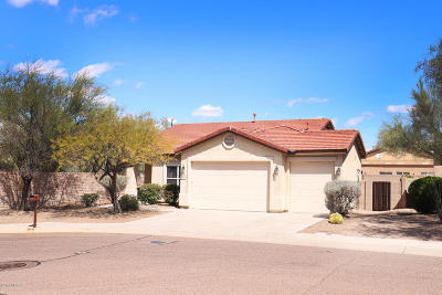 Tucson Single Family Home For Sale: 7636 W Gold Rock Place