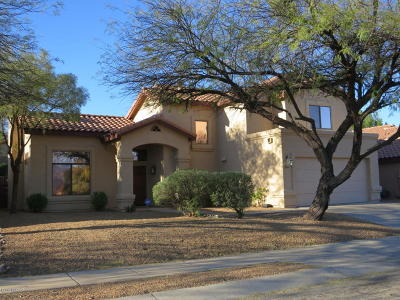 Tucson Single Family Home For Sale: 10670 E Channelside Drive