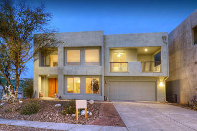 Tucson Single Family Home For Sale: 5033 Valley Vista Drive