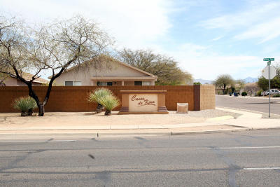 Pima County Single Family Home For Sale: 1640 E St Ferdinand Place