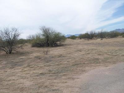 Tucson Residential Lots & Land For Sale: 16550 W Quinlin Trail