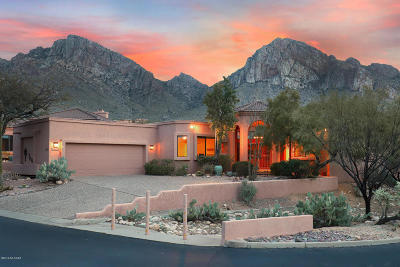 Tucson AZ Single Family Home For Sale: $450,000