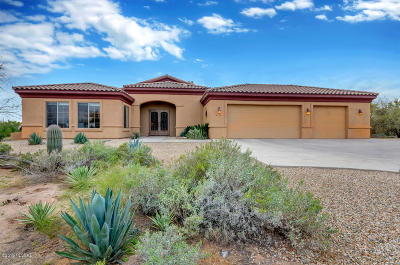 Tucson Single Family Home For Sale: 5110 W Camino De Manana