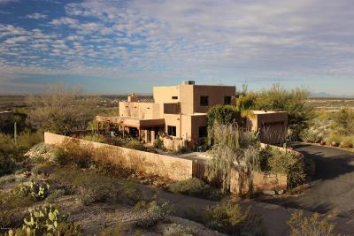 Tucson Single Family Home For Sale: 11540 E Camino Del Desierto