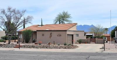 Green Valley Single Family Home For Sale: 151 W Calle Escudilla