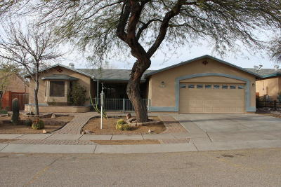 Tucson Single Family Home For Sale: 10225 E Rainbow Meadow Drive