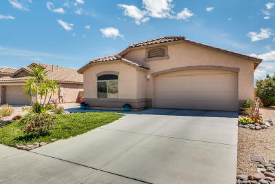 Green Valley Single Family Home For Sale: 837 W Rio Teras