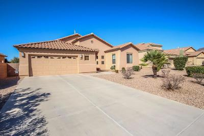 Tucson Single Family Home Active Contingent: 3328 S Prism Sky Drive